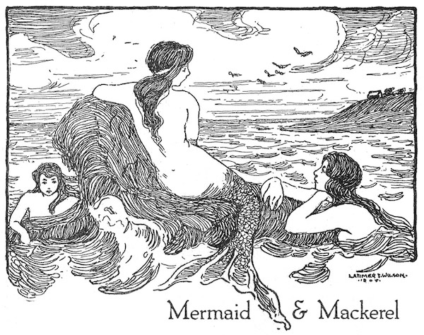 Mermaid & Mackerel